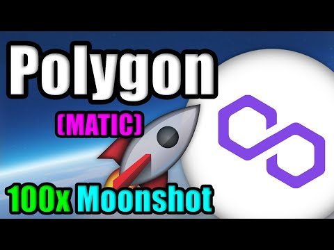 Why Polygon (MATIC) will 100x by 2030 | Crypto Co-Founder Explains