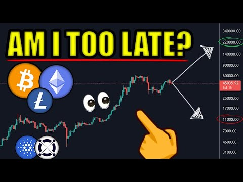 Am I Too Late To Invest In Bitcoin & Cryptocurrency? Bull Market Over? [Cardano, Elrond, ETH News]